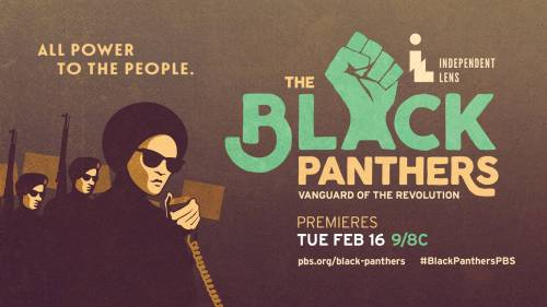 20160210_195555_116682_pbs_blackpanthers_socialskins_google
