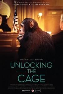 unlocking-the-cage